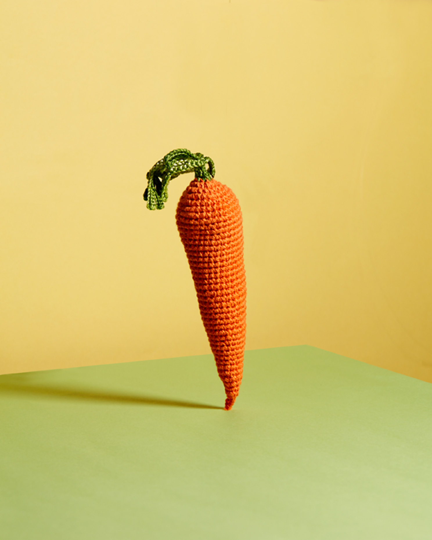 creative still life: carrot
