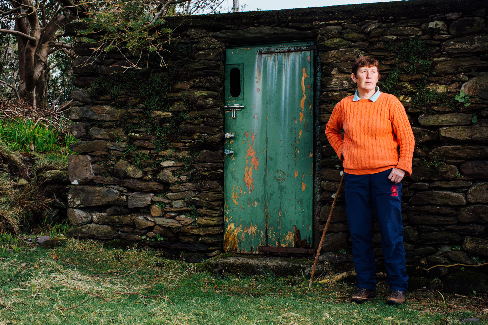a sequence of photos that tell a story: life on a farm in ireland