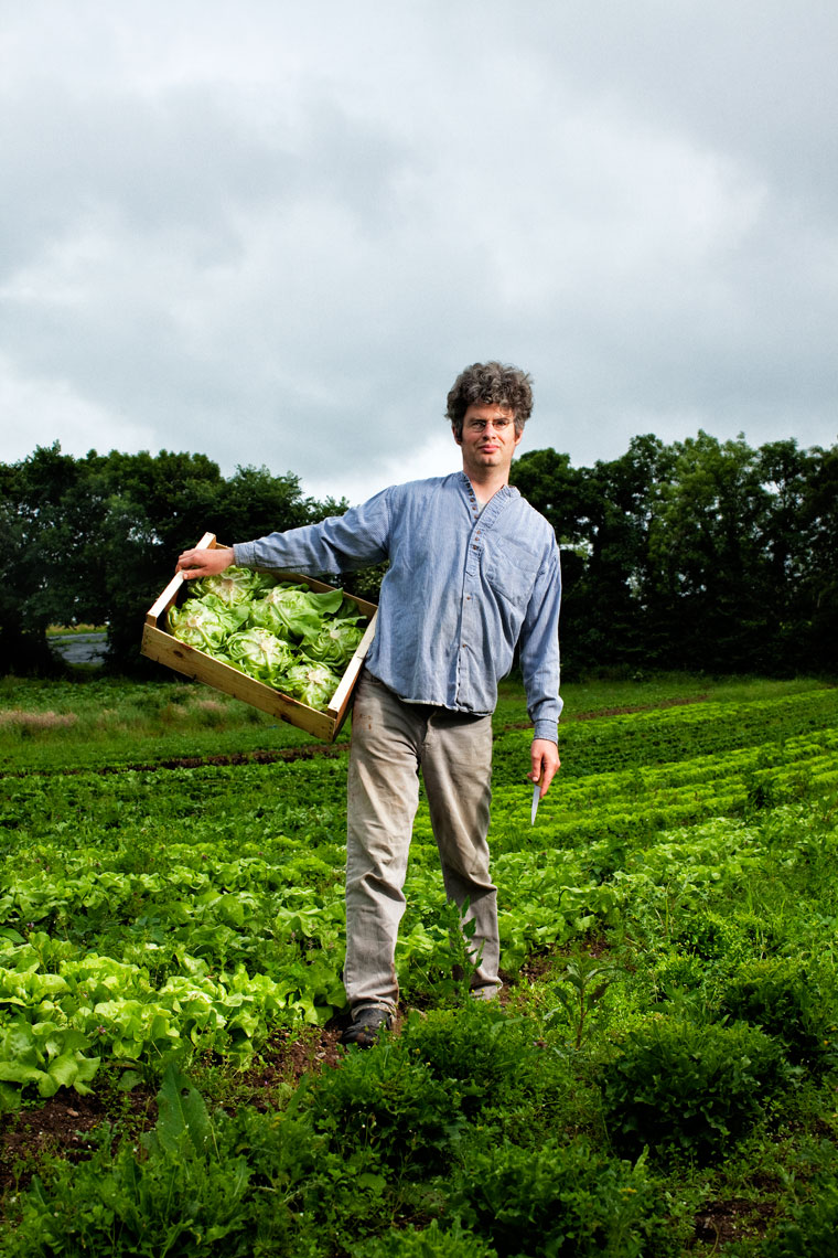 environmental photography: farmer standing in field with lettuce