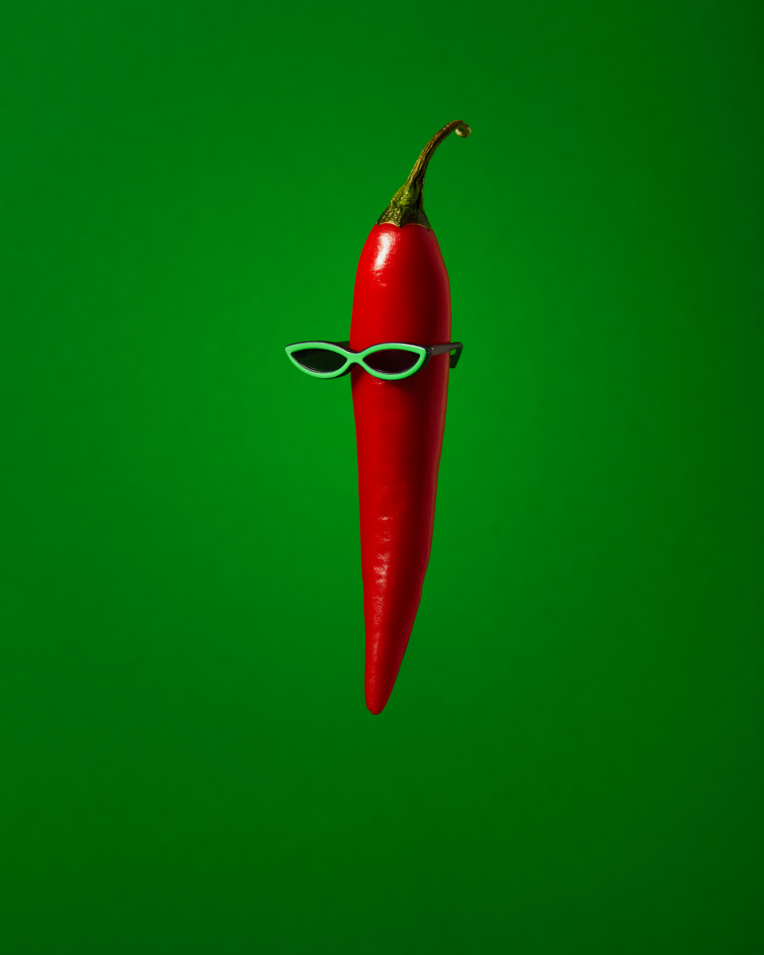 creative still life: red chili pepper